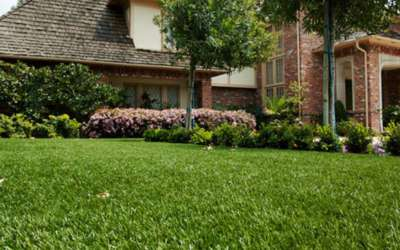 How to Install Artificial Grass – Synthetic Turf Installation