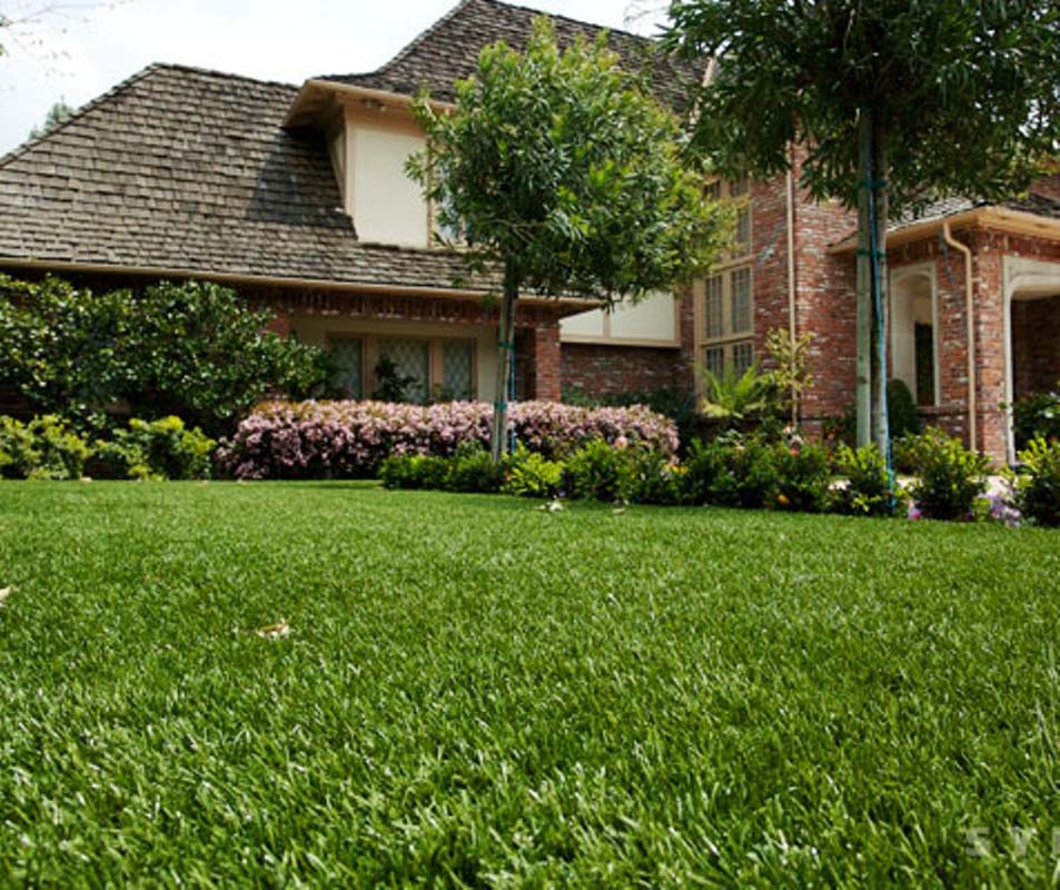 Home with StarPro Greens Artificial Grass Turf